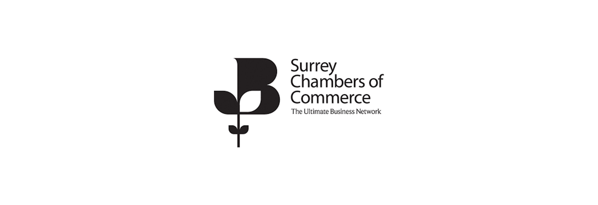Surrey Cham Commerce Brand Strategy